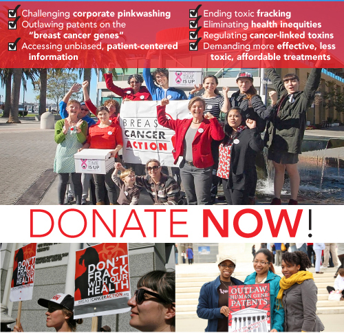 Make Your Year End Donation Today