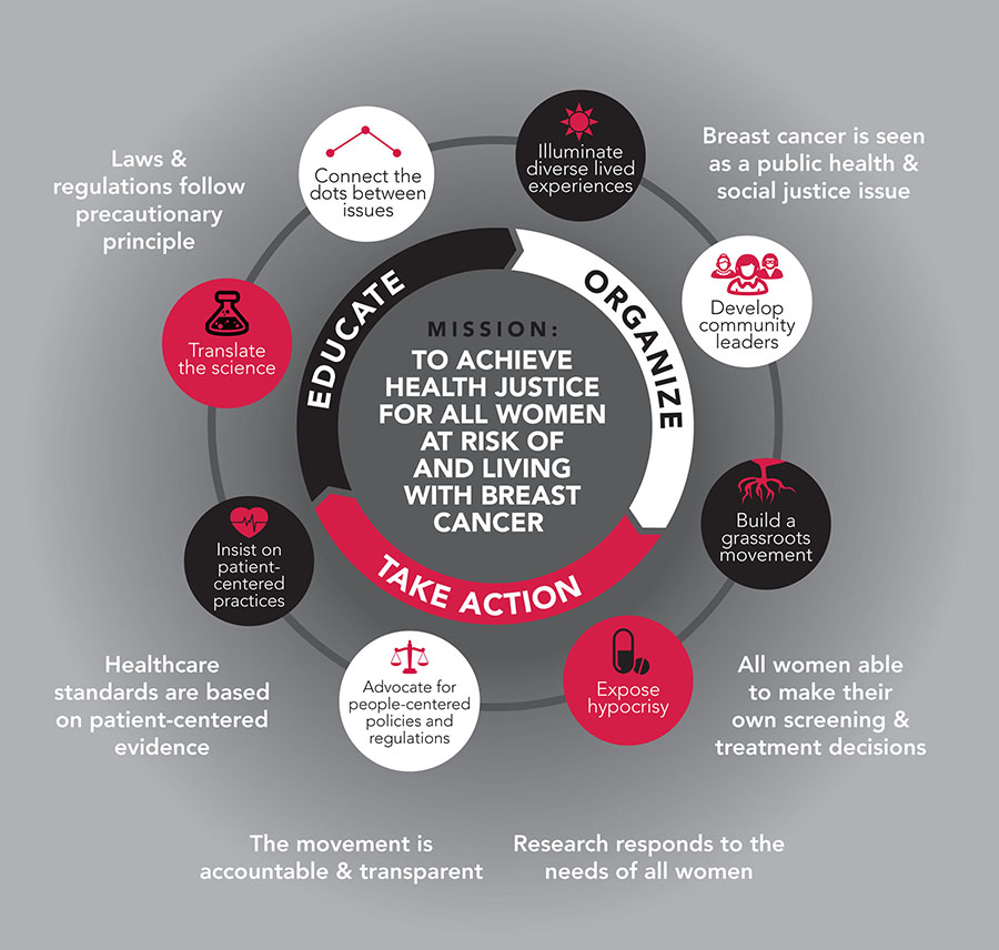Breast Cancer Action Theory of Change